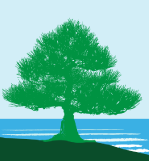 logo of pine tree against sky and sea